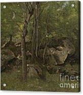 Rocks In The Forest Of Fontainebleau Acrylic Print