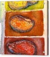 Rocks Number 3 Acrylic Print