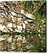 Rocks Reflecting Off Water Acrylic Print