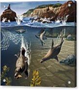 Rocky California Shore Acrylic Print