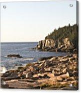 Rocky Coast Of Acadia Acrylic Print