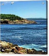 Rocky Coastline 3 Acrylic Print