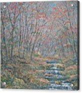 Rocky Forest. Acrylic Print