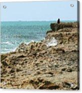 Rocky Limestone Cliff Blowing Rocks Preserve Jupiter Island Florida Acrylic Print
