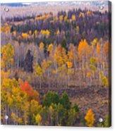Rocky Mountain Autumn View Acrylic Print