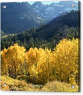 Rocky Mountain High Colorado - Landscape Photo Art Acrylic Print
