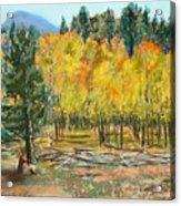 Rocky Mountain Siesta Acrylic Print