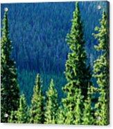 Rocky Mountain Skyline Acrylic Print