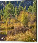 Rocky Mountains Autumn Acrylic Print