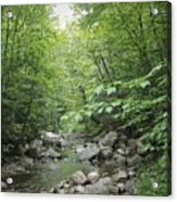 Rocky River In Green Acrylic Print