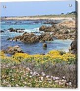 Rocky Surf With Wildflowers Acrylic Print
