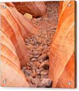 Rocky Trail Acrylic Print by James Marvin Phelps