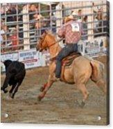 Rodeo 330 Acrylic Print
