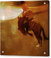 Rodeo Abstract Acrylic Print
