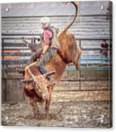 Rodeo Cowboy Acrylic Print