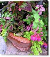 Roger's Gardens Begonia Acrylic Print