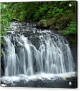 Rolley Lake Falls Dry Brushed Acrylic Print