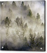 Rolling Fog In Sandy River Valley Acrylic Print