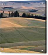 Rolling Hills Of The Palouse Acrylic Print