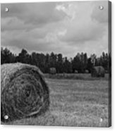 Rolls Of Hay Acrylic Print by Southern Photo
