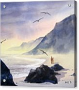 Romance Of The Cormorants Acrylic Print