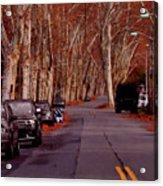 Roosevelt Avenue Red Acrylic Print
