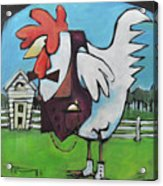 Rooster And Hen House Acrylic Print