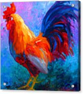 Rooster Bob Acrylic Print