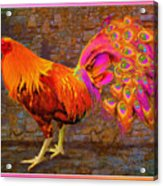 Rooster Peacock Acrylic Print