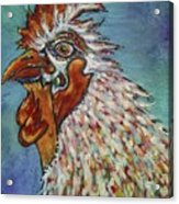 Rooster Visit Acrylic Print