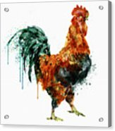 Rooster Watercolor Painting Acrylic Print