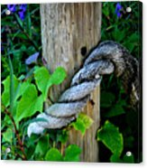 Rope And Vine Acrylic Print