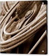 Rope N Saddle Acrylic Print