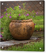 Rope Pot Flowers Acrylic Print