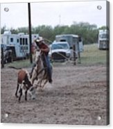 Roping Event 3 Acrylic Print