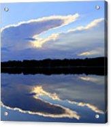 Rorschach Reflection Acrylic Print