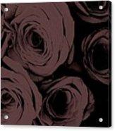 Rosa D'amore Deep Mauve Acrylic Print