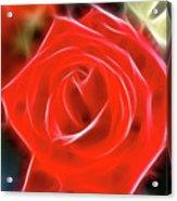 Rose-5827-fractal Acrylic Print