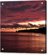 Rose Colored World Acrylic Print