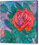 Rose Hope Acrylic Print