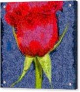 Rose - Id 16236-104956-0793 Acrylic Print