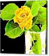 Rose In Vase Acrylic Print