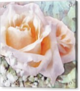 Rose Ivy Acrylic Print