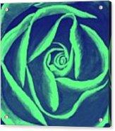 Rose Mint Acrylic Print