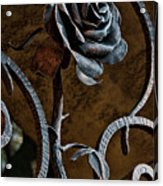 Rose Of Iron Acrylic Print