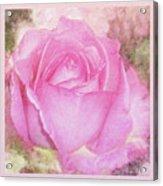 Enjoy A Rose Soft Pastel Acrylic Print