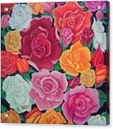 Rose Reunion Acrylic Print