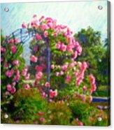 Rose Trellis Acrylic Print