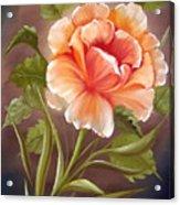 Rose Tropicana Acrylic Print