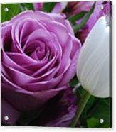 Rose With Tulip Acrylic Print